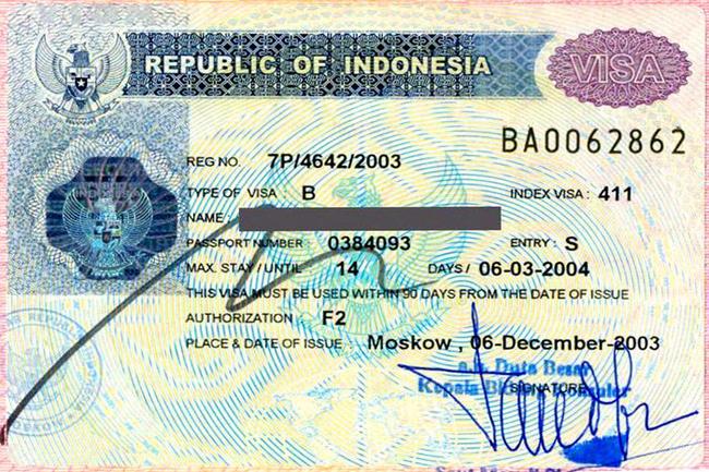 Социальная виза